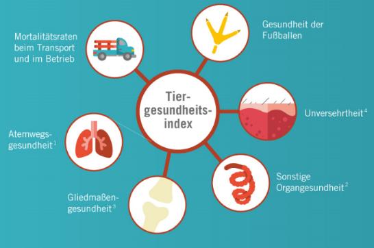 Grafik Tiergesundheitsindex Initiative Tierwohl