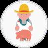 Schweinehalter Initiative Tierwohl