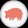 Schwein Initiative Tierwohl