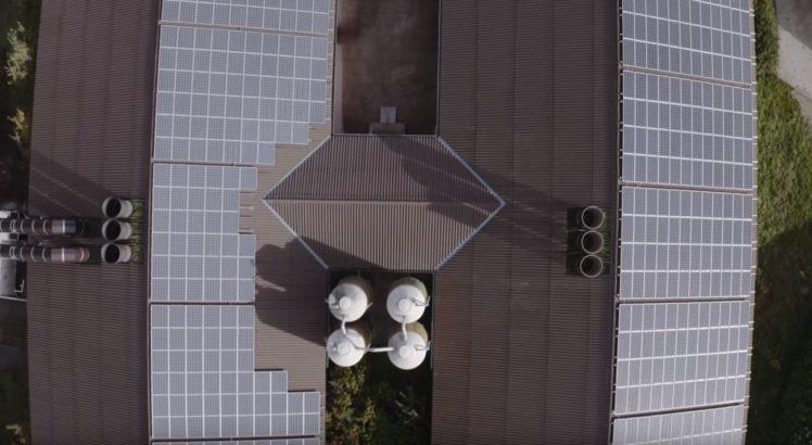 Die Photovoltaikanlage auf dem Dach der Stallanlage in einer Luftaufnahme.