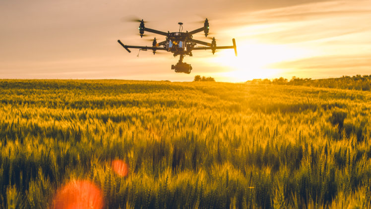 Feld mit Drohne
